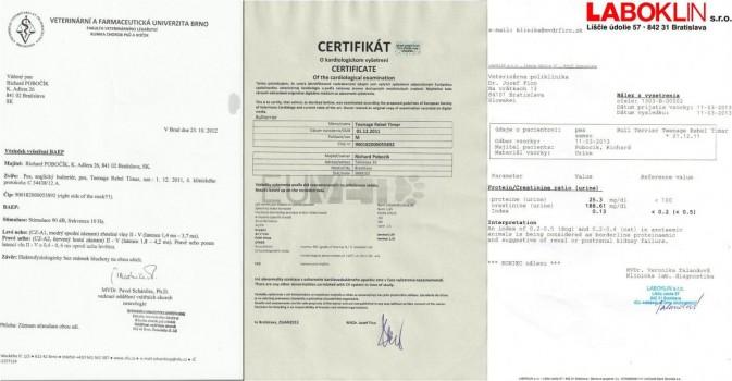 Certifikáty Timar